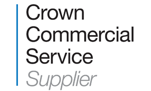 crown-commercial-service-supplier-2.png