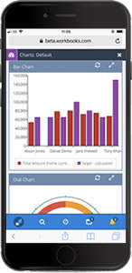 Mobile Screenshot of Workbooks CRM